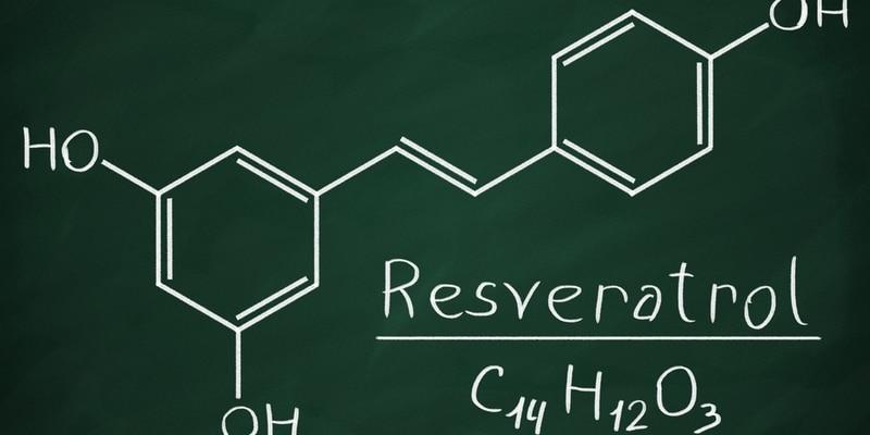 pencegahan kanker - buah anggur merah - resiko penyakit kanker