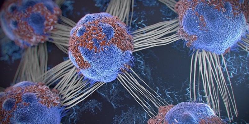 sel kanker - ciri-ciri kanker - jenis kanker