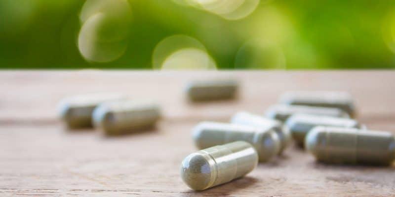 manfaat antioksidan - mengatasi kanker - manfaat quercetin