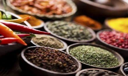 Temukan 12 Herbal Diet untuk Melangsingkan Badan Lebih Cepat