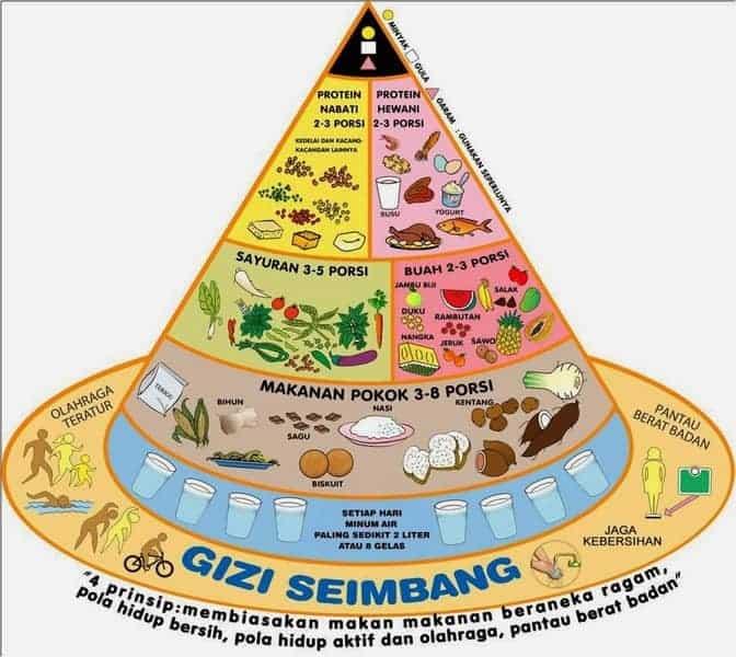 Gambar piramida gizi seimbang