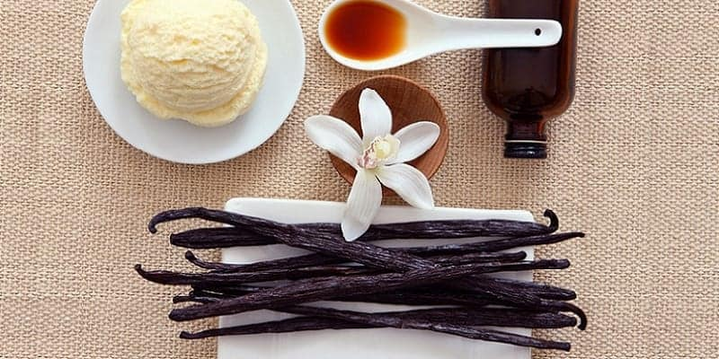 manfaat vanili - ekstrak vanili - herbal pencegah kanker