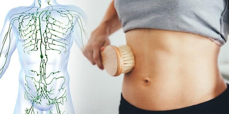 sistem limfatik untuk cegah kanker