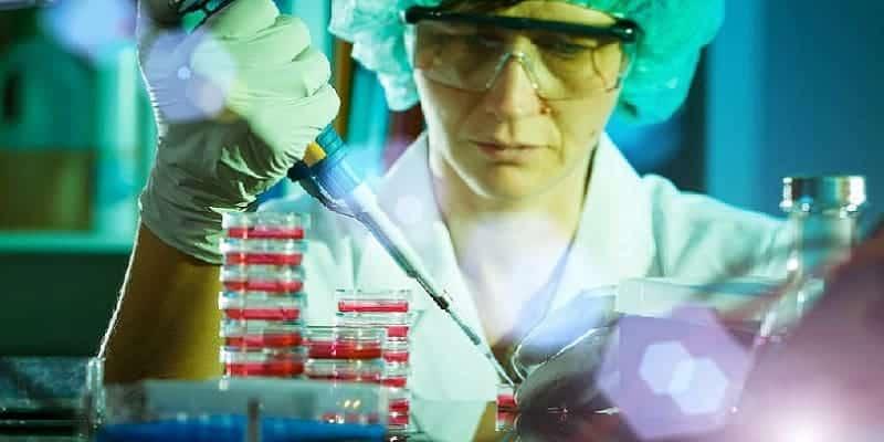 riset sistem imunitas untuk kanker