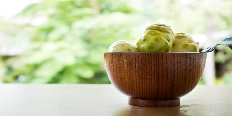 buah noni untuk ramuan herbal sariawan