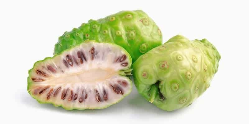 noni juice alternatif ramuan herbal hepatitis