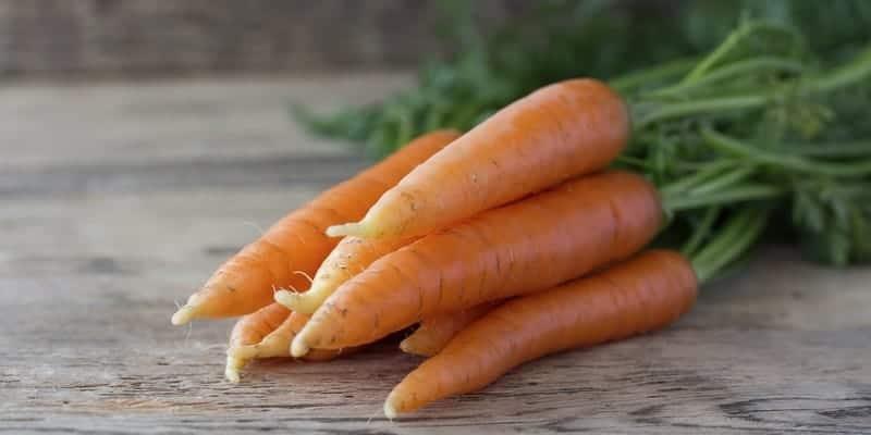 Resep herbal umbi wortel