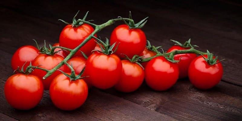 tomat untuk resep herbal wasir