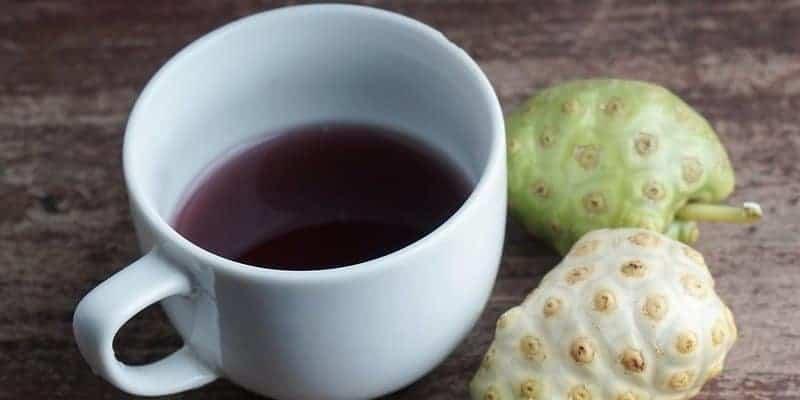 noni juice untuk ramuan herbal demam nifas