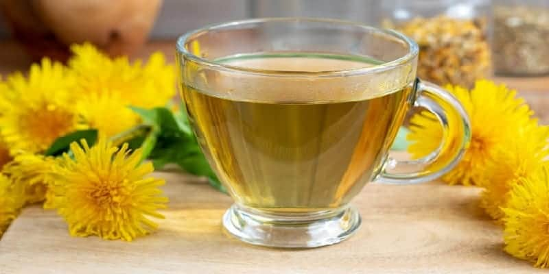 herba jombang untuk ramuan herbal radang empedu
