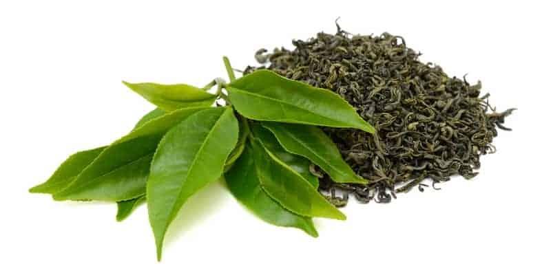daun teh untuk resep herbal karang gigi