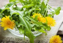 jombang untuk resep herbal kanker serviks
