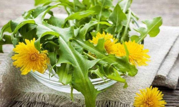 Resep Herbal Kanker Serviks yang Perlu Anda Gunakan