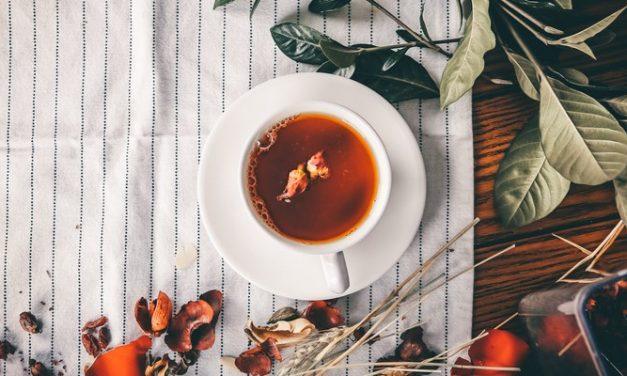 Minum Ramuan Tradisional: Apa Aturan Umum yang Perlu Diikuti?