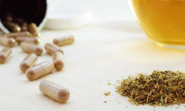 Herbal Hipertensi Terbaik: Noni Juice dan Sarang Semut