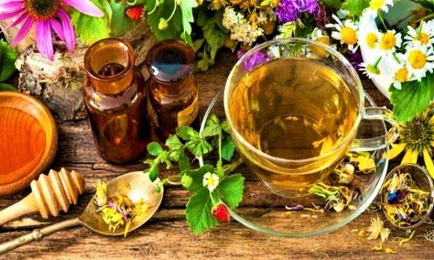 Ramuan Herbal untuk Hipertensi Bantu Pemulihan Diri