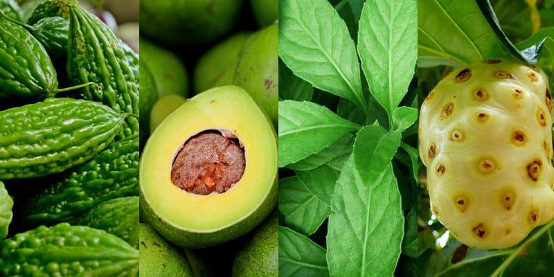 obat diabetes herbal