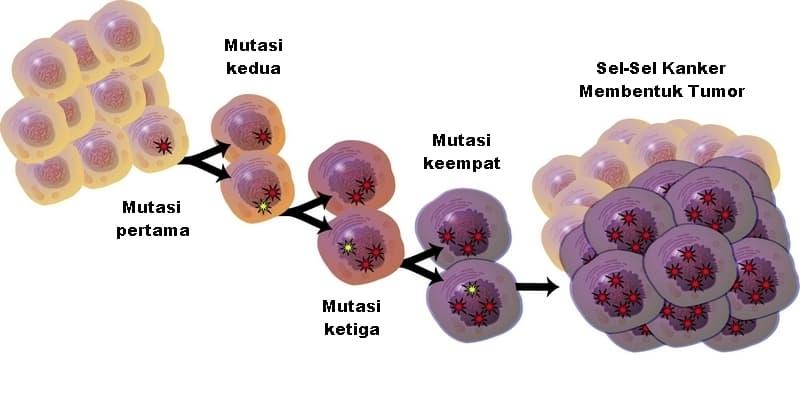 mutasi sel kanker