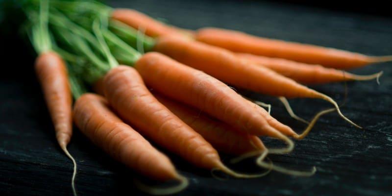 wortel untuk kanker