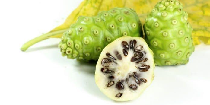 Minuman sari buah noni, suplemen untuk meningkatkan imunitas tubuh