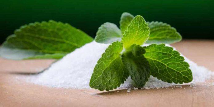 gula dari daun stevia