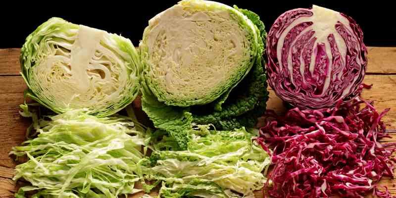 sayuran kubis