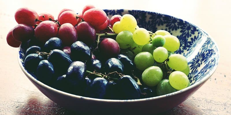 buah anggur untuk penyembuh kanker