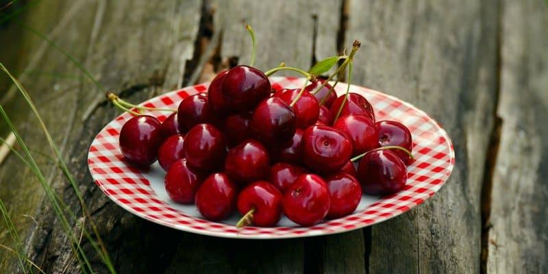 buah ceri untuk mengobati kanker