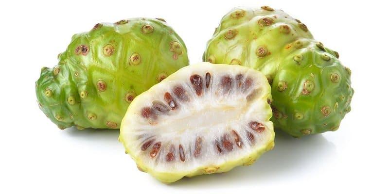 buah noni