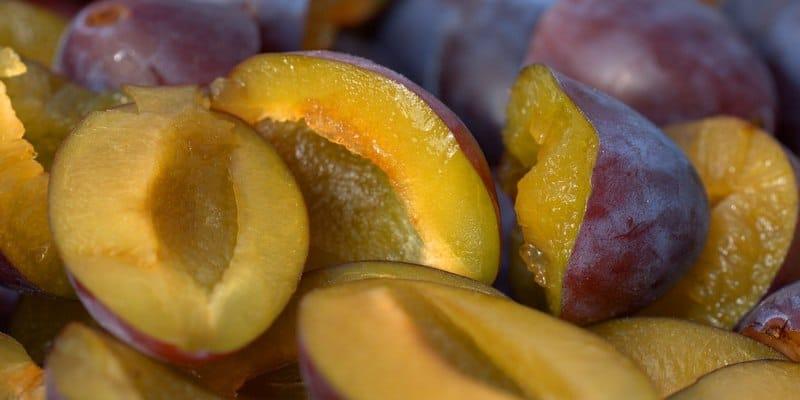 cara makan buah plum