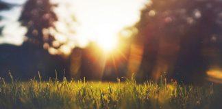 Sinar Matahari Terbaik Jam Berapa?