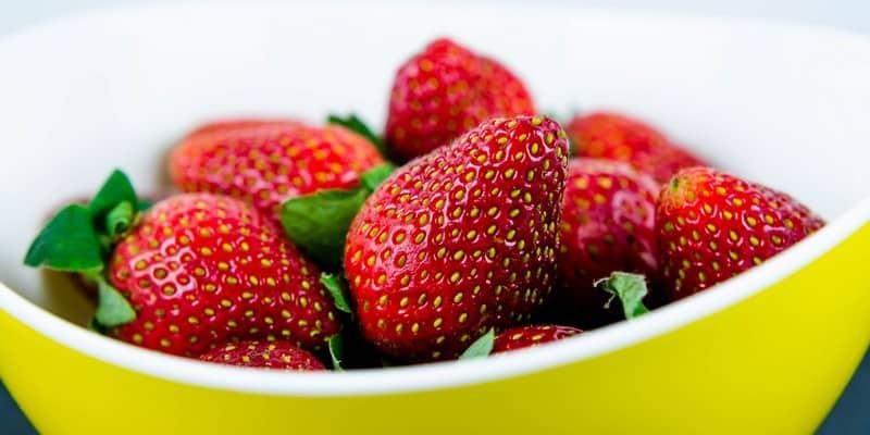 buah stroberi untuk obat kanker alami