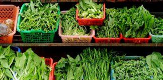 Makanan untuk Mencegah Kanker Payudara