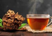 Ilustrasi Rebusan Sarang Semut untuk Obat Kanker