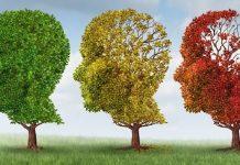 Ilustrasi Mencegah Penurunan Kinerja Otak