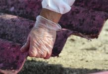 Asbes Adalah Penyebab Penyakit Kanker Mesothelioma