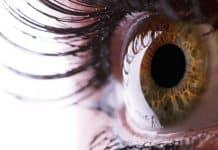 Ilustrasi Penyebab Penyakit Mata Glaukoma
