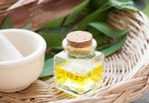 Manfaat Kayu Putih untuk Anti Virus Corona