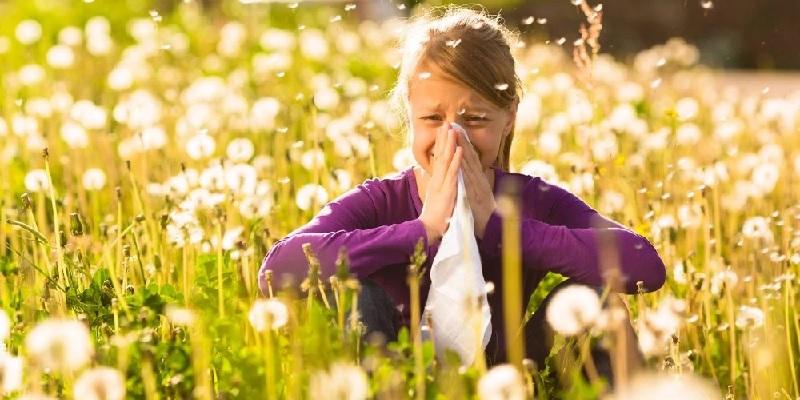 obat alergi rhinitis di apotik